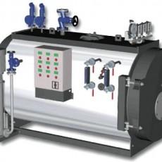 Паровой котел для выработки пара среднего давления VAPOPREX HVP